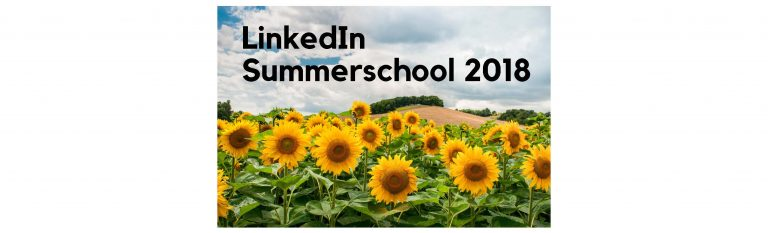 https://www.desocialmediatraining.nl/wp-content/uploads/2018/06/summerschool2018-768x233.jpg