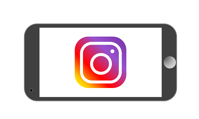 https://www.desocialmediatraining.nl/wp-content/uploads/instagram-1936912_640.png