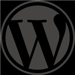 WordPress cursus