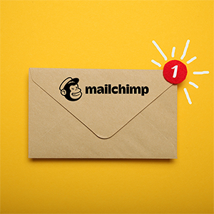 https://www.desocialmediatraining.nl/wp-content/uploads/mailchimp-envelop.jpg